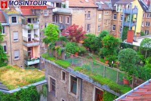 Озеленение крыши жилого здания в условиях города